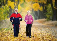 палки для скандинавской ходьбы для пожилых